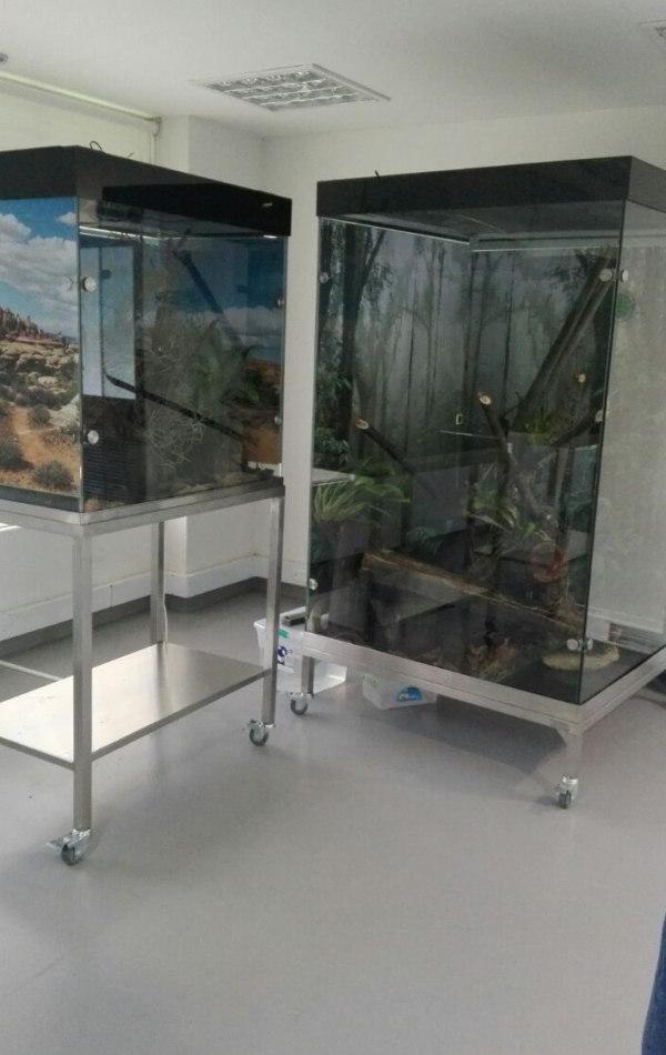 La Vidriera - Proyectos - ukumari terrariums