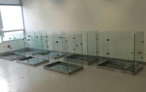 Terrarium Ukumarí | La Vidriera